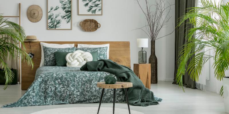 Traitement écologique contre les punaises de lit